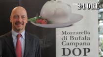 Consorzio Mozzarella di Bufala Campana DOP: con la crisi occorono nuove regole
