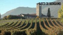 Valcalepio boom biologico: al 20% tra i vini DOP