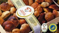 Fiera del Fungo di Borgotaro IGP: due weekend di appuntamenti