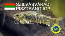 Szilvásváradi Pisztráng IGP - Ungheria
