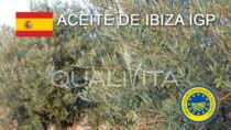 Aceite de Ibiza IGP - Spagna