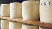 Il Pecorino Romano DOP guarda alla Cina e l'aumento di latte non fa calare i prezzi