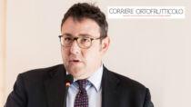 Arancia Rossa di Sicilia IGP, Giovanni Selvaggi confermato presidente