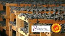 Consorzio vini Valpolicella: incontro con vertici aziende e associazioni