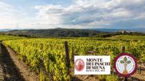 Accordo tra Banca MPS e Consorzio del Vino Brunello di Montalcino: al via il pegno rotativo sul vino