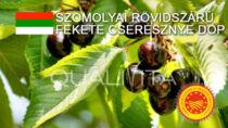 Szomolyai Rövidszárú Fekete Cseresznye DOP - Ungheria