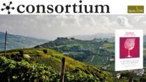 Effetto Barbera d'Asti DOCG: vino come progetto territoriale