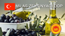 Milas Zeytinyağı DOP - Turchia