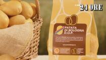 Patata di Bologna DOP, produttori alla prese con una crescita del 33%