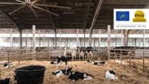 Progetto Life TTGG, soluzioni per un settore agricolo e zootecnico più sostenibile