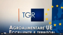 VIDEO - RAI TGR RegioneEuropa progetto Life TTGG