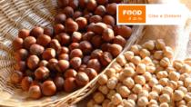 La Nocciola di Giffoni IGP, una delle varietà più pregiate e apprezzate d'Italia