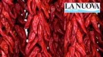 Peperoni di Senise IGP, 750mila euro a sostegno dei produttori