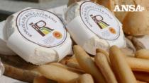 Robiola di Roccaverano DOP, in un anno + 3,4% forme prodotte