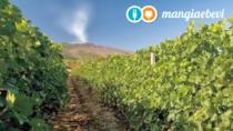 Etna DOP: la nuova generazione dell'enologia alle pendici del vulcano