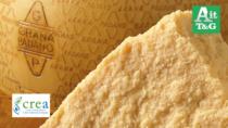 CREA, analisi del Dna per difendere i veri formaggi italiani