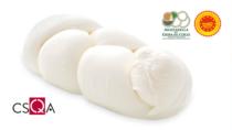 Mozzarella di Gioia del Colle DOP:  in arrivo la produzione certificata