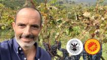 Cerasuolo di Vittoria DOP, Achille Alessi riconfermato alla guida del Consorzio