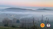 Brunello di Montalcino DOP: temperatura sotto zero ma danni limitati