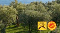 TerrAgir3: il brand Liguria punta al mercato internazionale