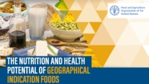 FAO - Nutrizione e salute, il potenziale degli alimenti a Indicazione Geografica