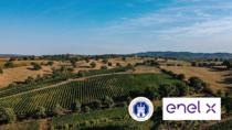 Economia Circolare: Consorzio Tutela Morellino di Scansano ed Enel X insieme per uno sviluppo sostenibile