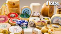 Distretti del lattiero-caseario fondamentali per l
