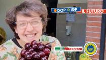 #DOPIGPFUTURO – L'esperienza di Monica Grandi, produttrice e innovatrice della Ciliegia di Vignola IGP