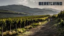 Il Consorzio Tutela Vini d'Abruzzo e la promozione che accelera in Estremo Oriente