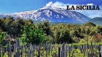 Etna DOP Nerello Mascarese, risorsa culturale e turistica: via a cammini con visite e degustazioni