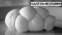 Mozzarella di Gioia del Colle DOP: costituito il Consorzio di tutela