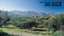 Consorzio DOP Val di Mazara: un baluardo per la tutela della genuinità dell