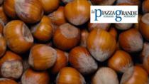 Innovazione, ricerca e sostenibilità per valorizzare la Nocciola del Piemonte IGP