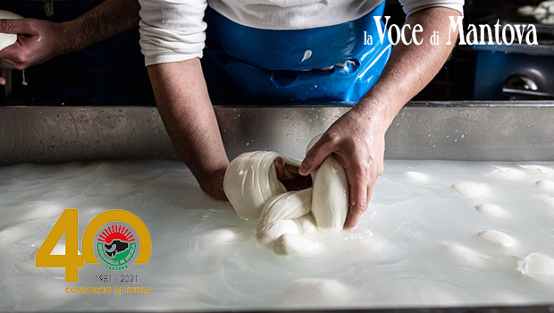 Mozzarella di Bufala Campana DOP - VocediMantova