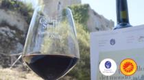 I vini Orcia DOP nel calice: a Castiglione d'Orcia torna Calici di Stelle