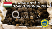 Jászsági nyári szarvasgomba IGP - Ungheria