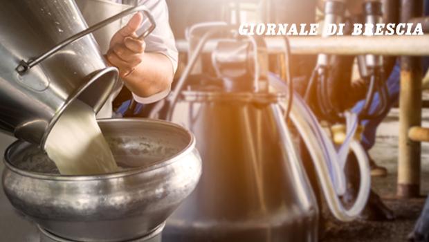 Latte - Giornale di Brescia