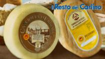Doppiamente Eccellenti: tuteliamo i formaggi DOP