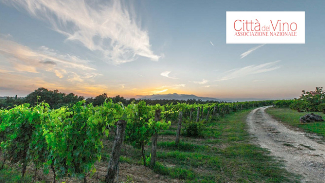 Consorzio Vini Montecucco