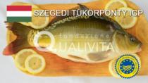Szegedi Tükörponty IGP - Ungheria