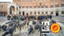 """""""La Cinta Senese torna in Piazza del Campo"""""""